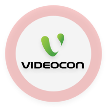 National Electronics videocon